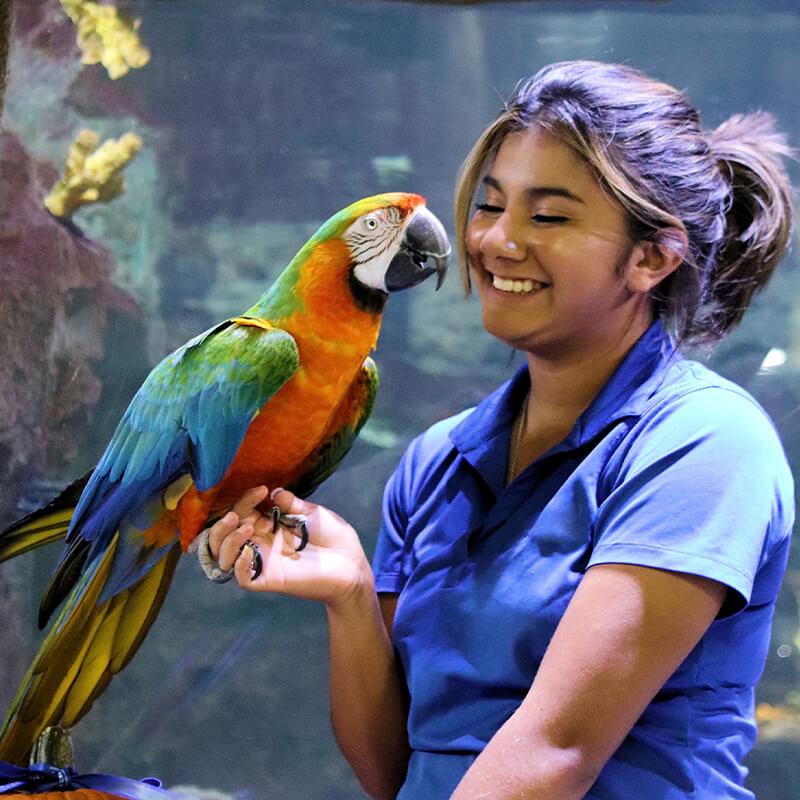 aviary specialist holding bird