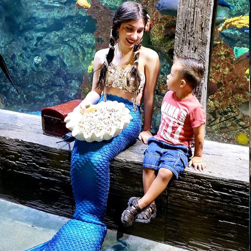 meet our mermaid characters